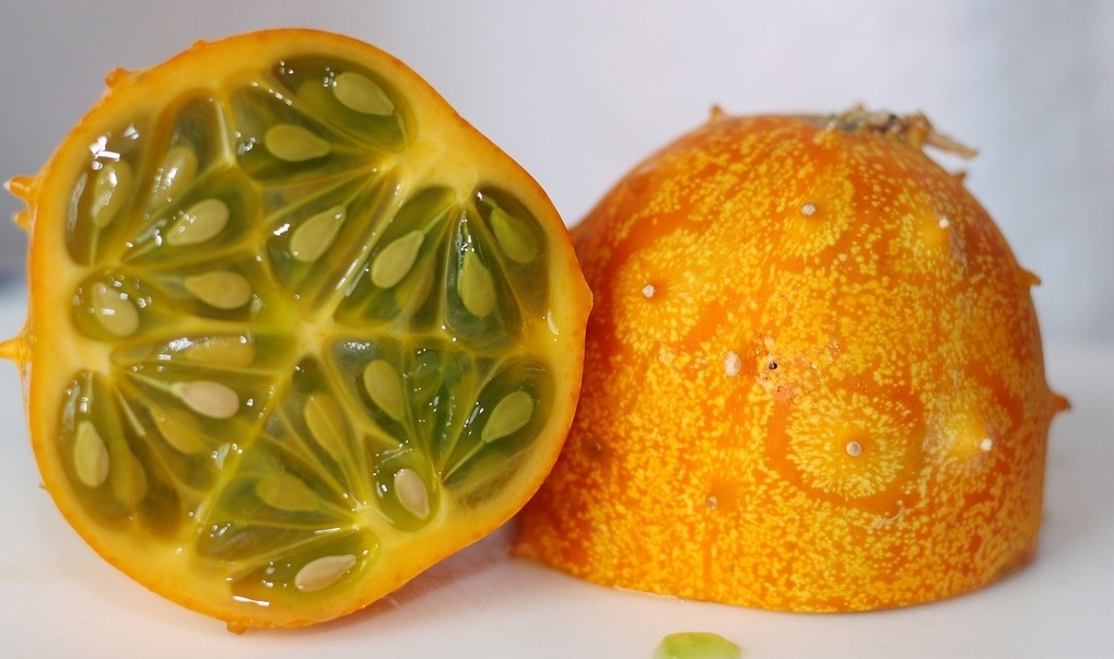 Horned-Melon-kivano-2