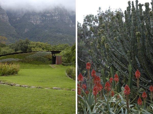 Lana-Kenney-Kirstenbosch-5
