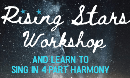 VDC Rising Star workshop