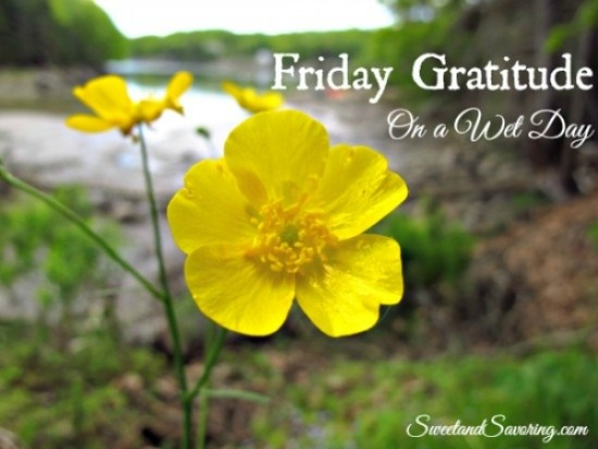 Friday Gratitude on a Wet Day - Sweet and Savoring