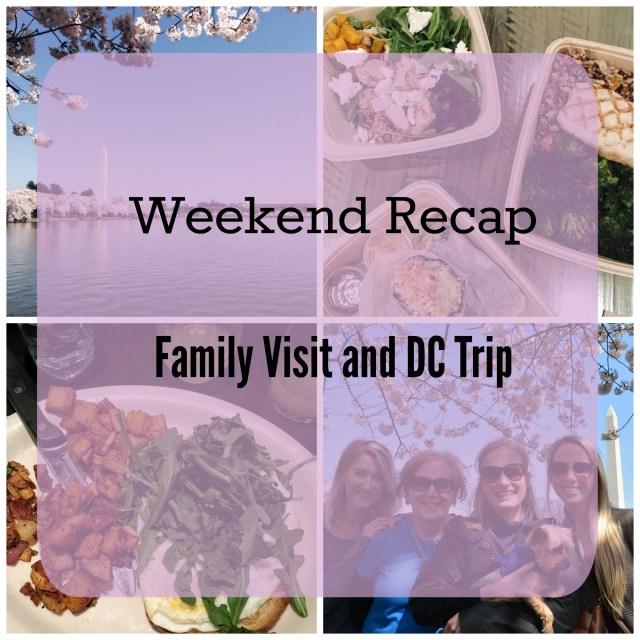 Weekend Recap Family Visit and DC Trip