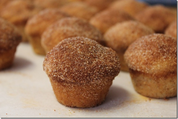 Muffins that Taste Like Donuts (2/3)