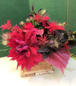 All reds of bee balm, dahlias, crocosmia, nigella, roses and hardy begonia leaves