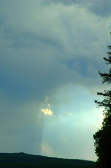 Light in the Sky