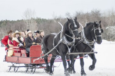Whitefish Carnival Royalty in Sled with Black-Horses
