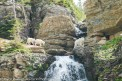Mountain Goat Mom & Two Kids on Waterfall