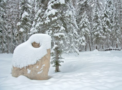 Santa Rock, Snow, Trees