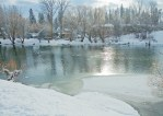 Whitefish River, Ducks, Winter, Snow