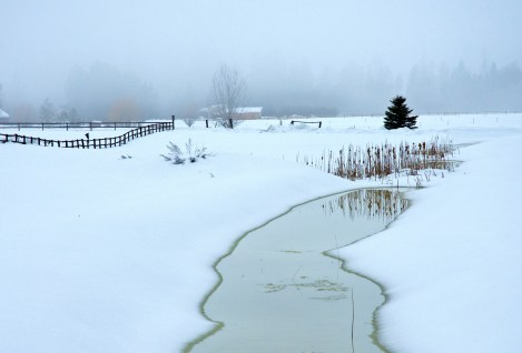 Early Spring, Winter Scene, Water Path through Snow, Home Driveway
