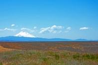 Oregon, Volcano, Long View