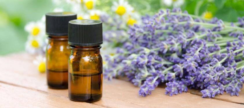 calming-essential-oil-blend