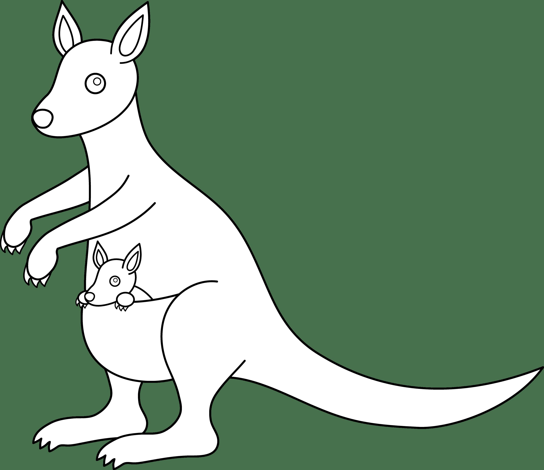 Kangaroo Clip Art Black And White