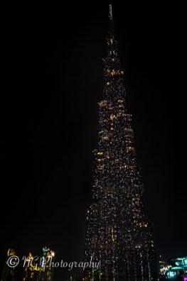 Gallery_Dubai-5