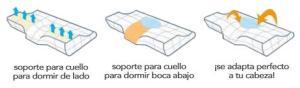 Sin titulo 2 480x480 SweetDream la almohada cervical que cambiara tu forma de dormir
