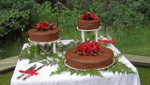 Leah & Merit's Wedding Cake