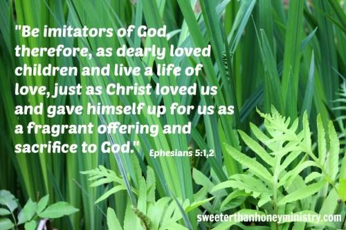 Ephesians 5-1,2 pic