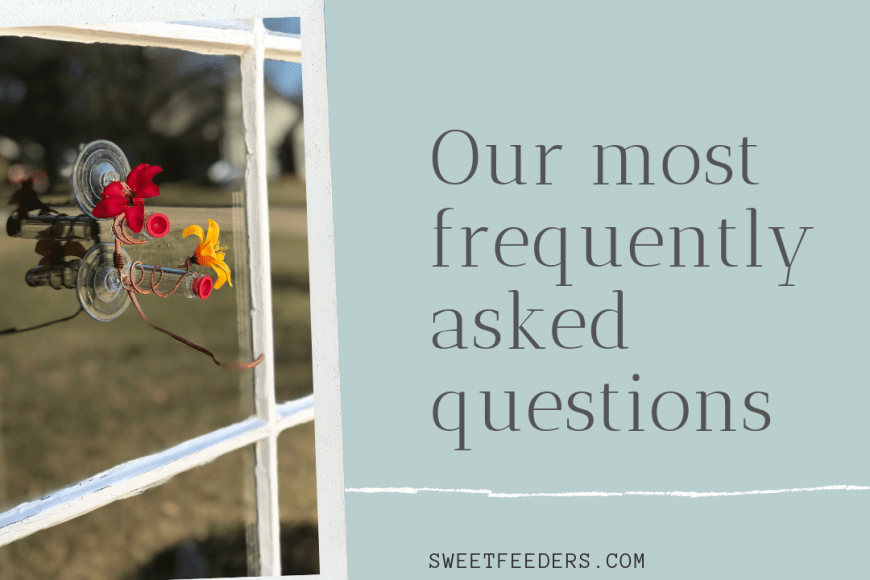 Sweet Feeders; Our Most Often asked Questions