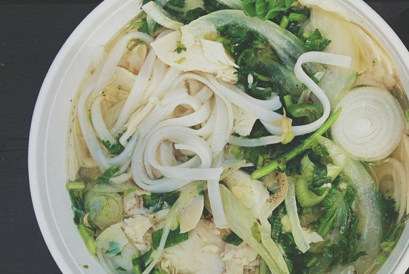 low carb chicken pho