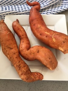 Sweet Potatoes from the garden