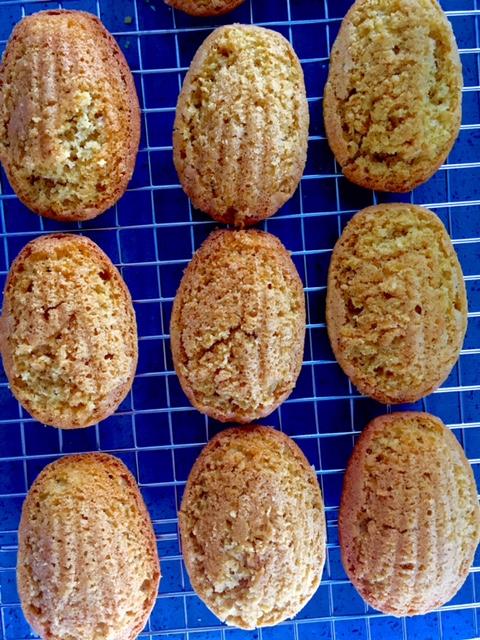 Cooling Madeleine Cookies