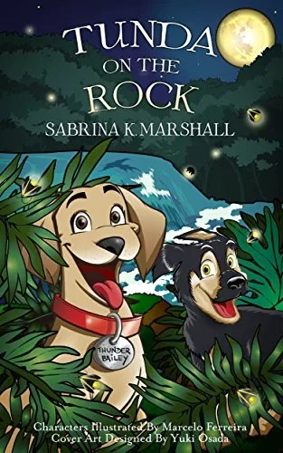 Good Children's Books for Travelling – My Review of Tunda on the Rock