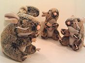 Daredevil Speckled Mice