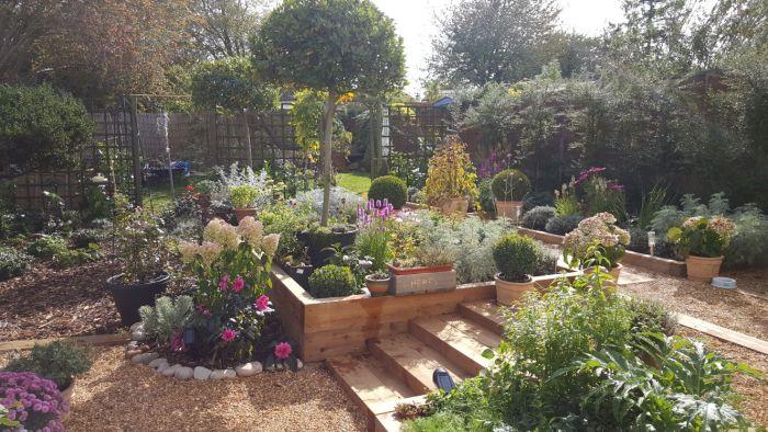 Back garden after makeover