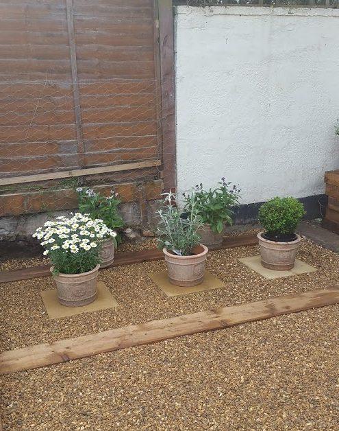 pot plants on slabs