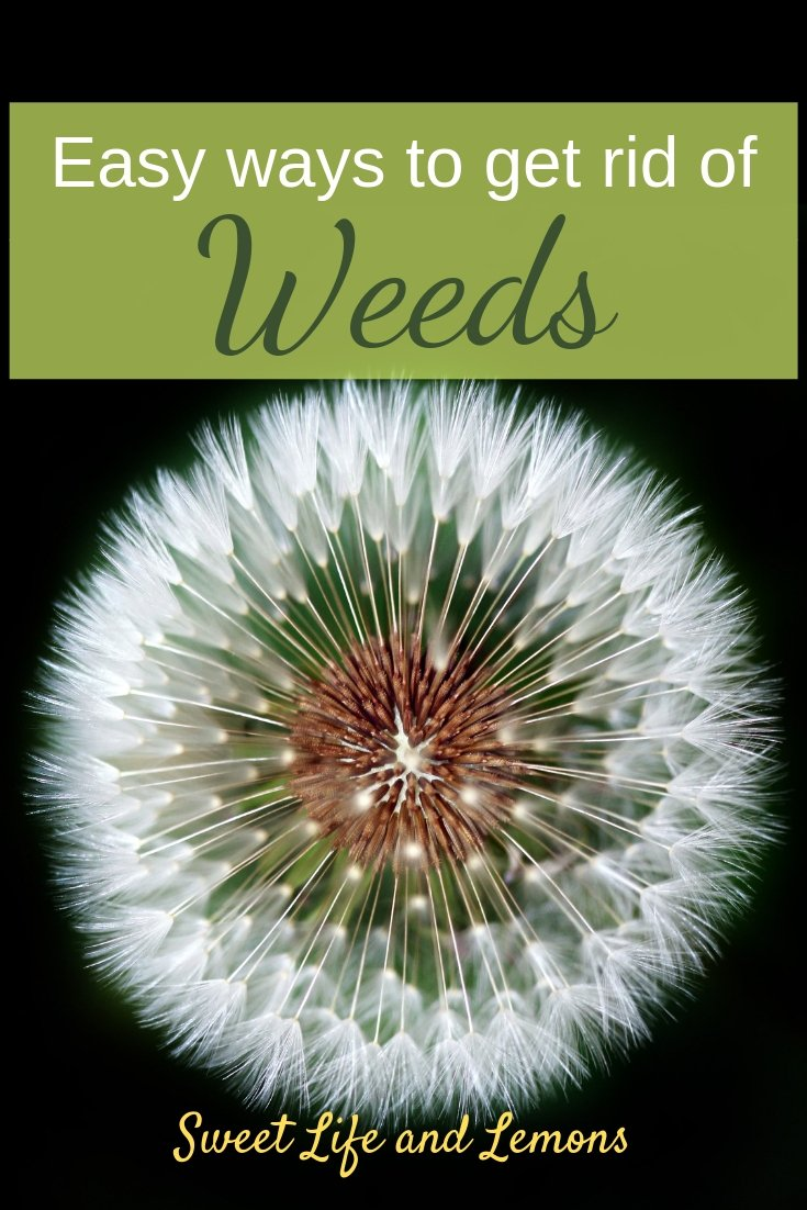 easy ways to weed