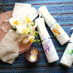 Entertaining Tips with Febreze ONE