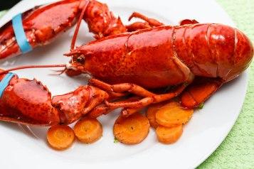 Lobster-1-2