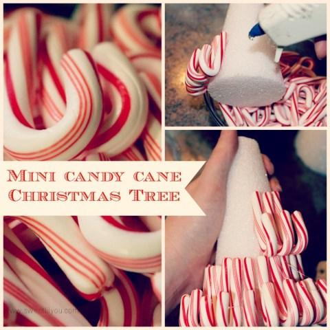 Mini Candy cane christmas tree Price Chopper sweetlilyou holiday decorating #Shop #HolidayAdvantEdge