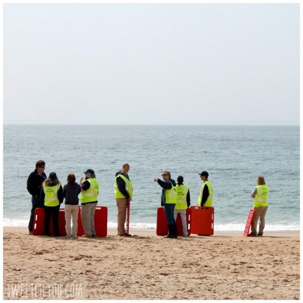 Mystic Aquarium Animal Rescue Team standing on the beach