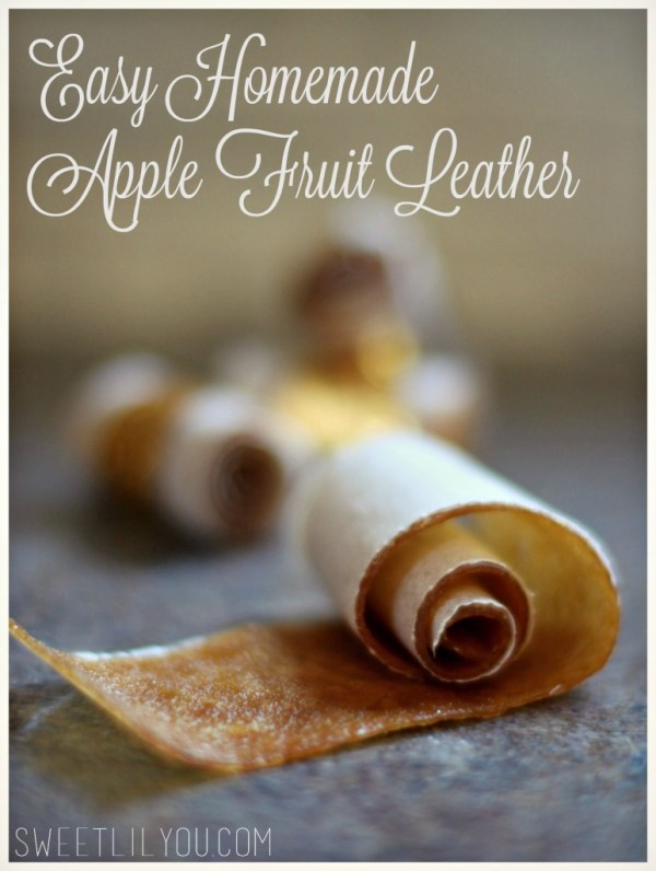 Easy Homemade Apple Fruit Leather