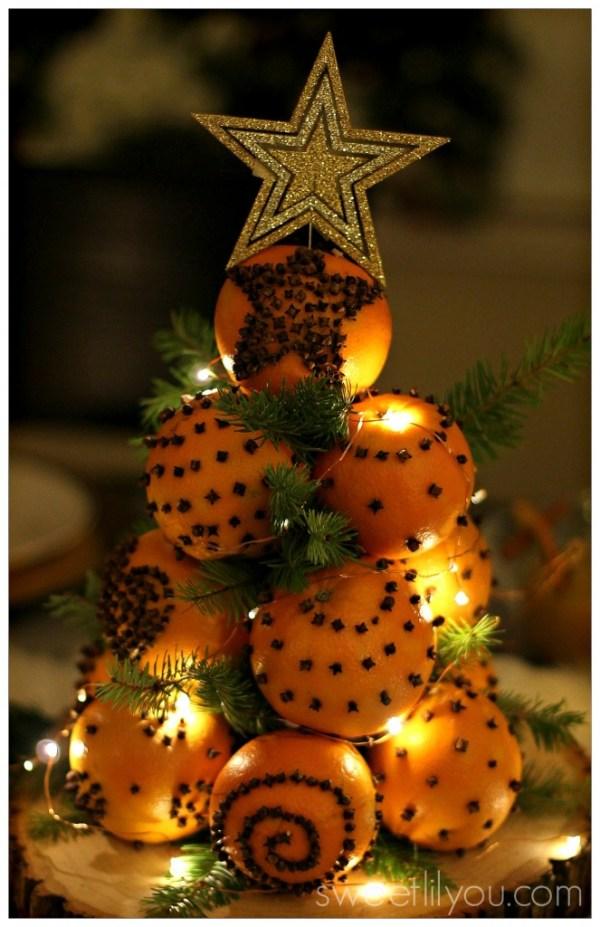 orange-pomander-tree