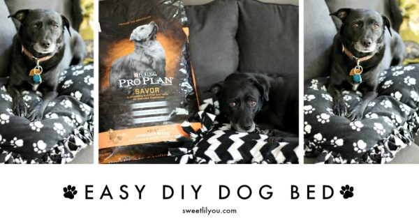 Easy DIY Dog Bed Purina Pro Plan