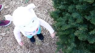 little-girl-christmas-tree