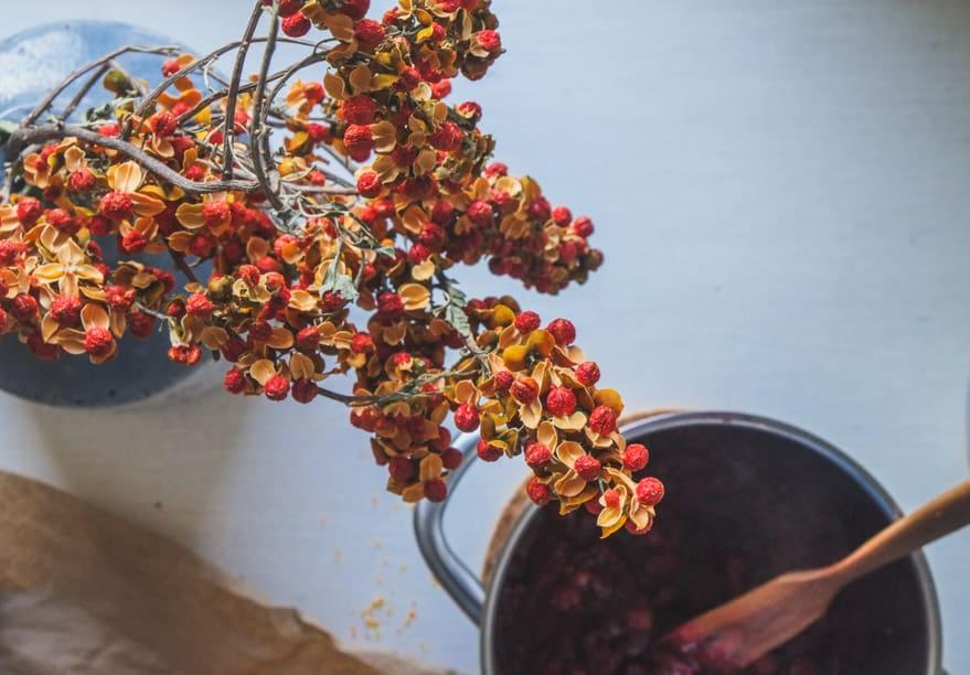 Elderberry-Cranberry-sauce