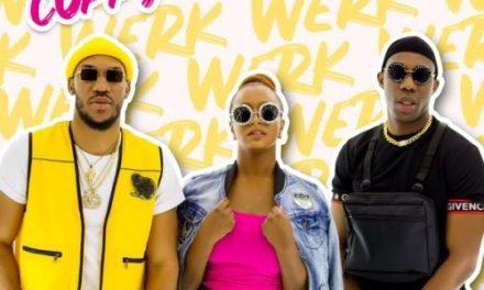 """Music:-Dj Cuppy – """"Werk"""" ft. Skuki"""