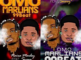 Hot FreeBeat : Naira Marley Ft Snowz - Omo Marlians 99beat