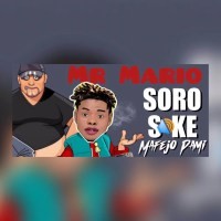 Mr Mario - Soro Soke