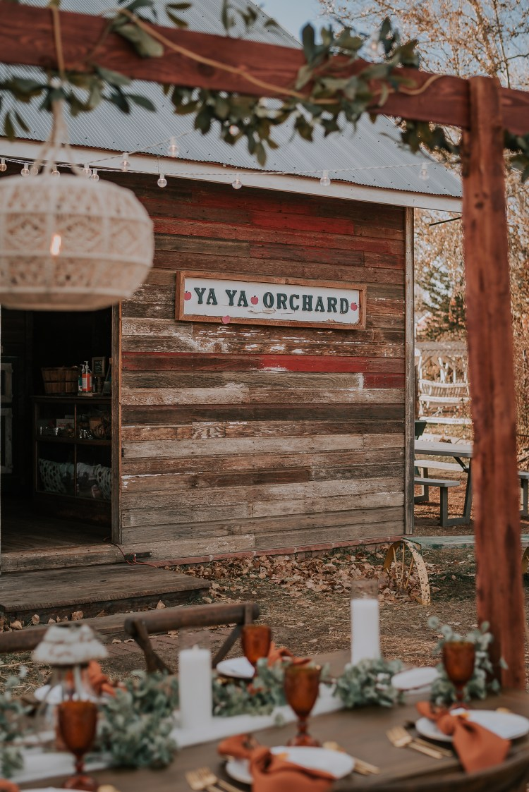 Look at how cute the sign at Yaya Farm is! Like I said, this is the perfect place for your rustic fall wedding but also such a fun place to come for a family day. Bring the kids because you can feed the horses and donkeys which is always a fun activity.