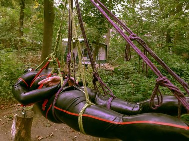 In-den-Seilen