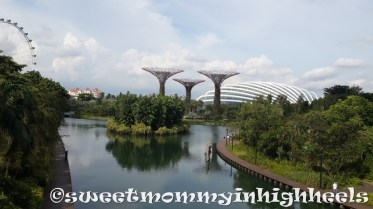 Gardens by the Bay East side