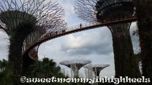 The bridge across Super Trees