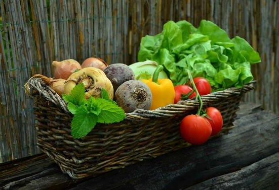 App: too good to go, gaat voedselverspilling tegen!
