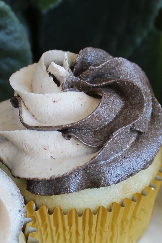 Mocha Frosting on a cupcake.