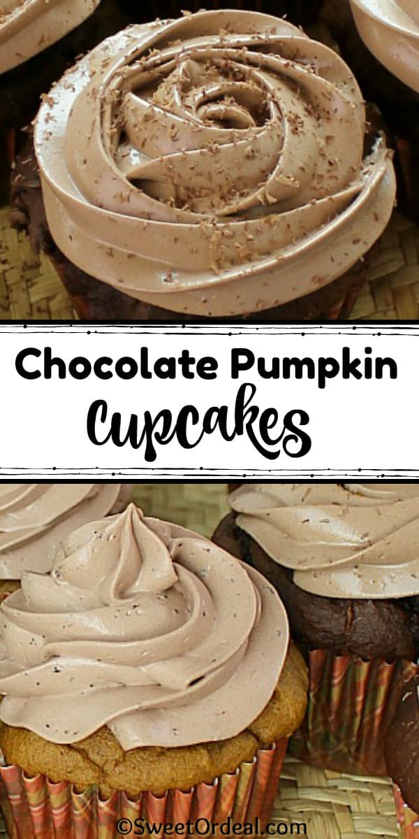 Chocolate frosting on pumpkin flavored cupcakes.