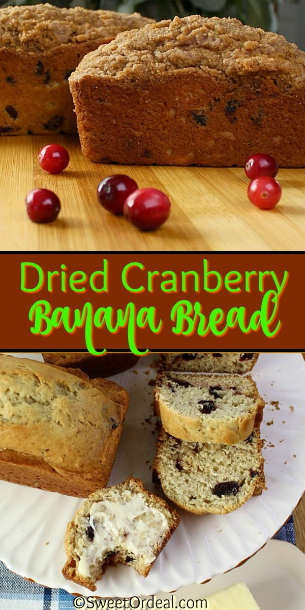 Dried Cranberry Banana Bread