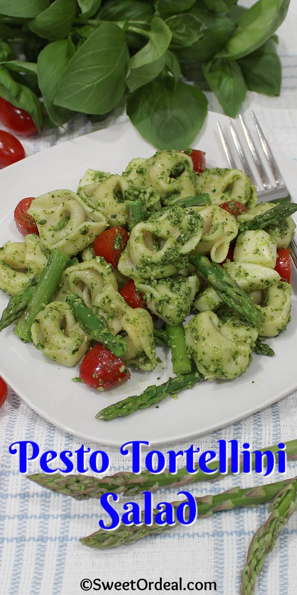 A serving of Pesto Tortellini Salad.